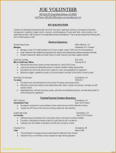 Dj Resume Template - High School Job Resume Template Inspirational Professional Resume