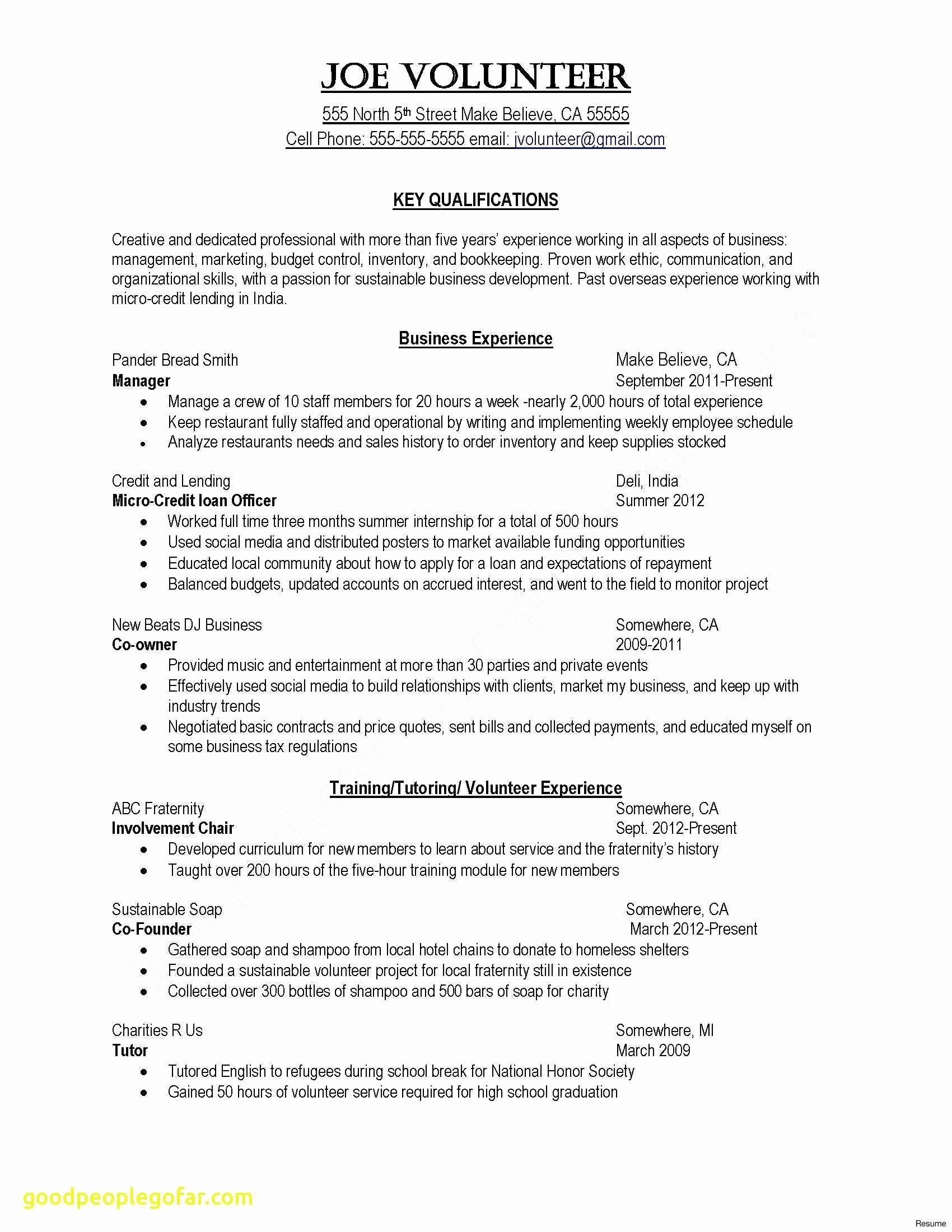 11 dj resume template collection