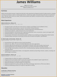 Doctor Resume Template - Fresh Best Federal Government Resume Template Best Bsw Resume 0d