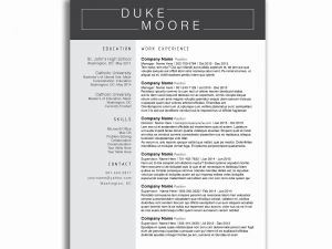Driver Resume Template - Driver Resume Elegant Resume Templates for Truck Drivers Fresh