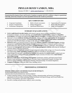 Entrepreneur Resume Template - Business Resume Refrence Career Change Resume Template Unique