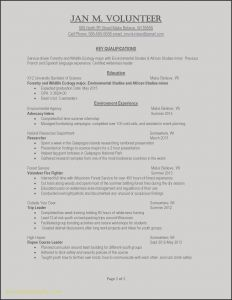 Eresume - Resume Overview Examples Best Example Perfect Resume Fresh Examples