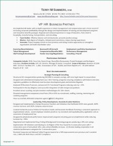 Executive Automotive Resume - Automotive Technician Resume Free Sample Resumes Unique Sample
