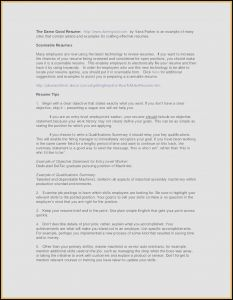 Executive Automotive Resume - Examples Executive Summary Templates Lovely It Executive Summary