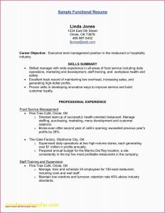 Executive Automotive Resume - Auto Body Technician Resume New Tech Resume Best Great Resume