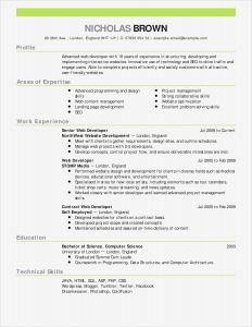 Executive Hybrid Resume Template - Sample Bination Resume Template Unique E Merce Resume Sample