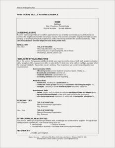 Extracurricular Activities Resume Template - Resume Skill Set Examples New Resume Skills and Abilities Beautiful