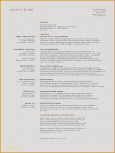 Fashion Design Resume Template - Fashion Designer Resume Sample Free Design Examples Template