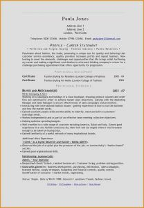 Fashion Industry Resume - 22 Lovely Fashion Stylist Resume