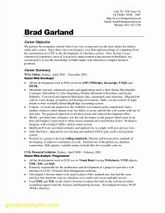 Fashion Resume Template - 25 Fashion Resume Templates