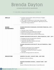 Finance Resume - Puter Hardware Skills for Resume Download Free Puter Skills