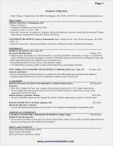Finance Resume Template - Sample Resume for Finance Save New New Resume Sample Best Resume