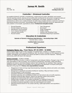 Finance Resume Template - Business Plan Financial Template Awesome Cfo Resume Template