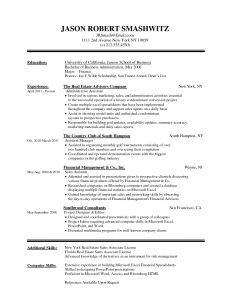 Finance Resume Template Word - Resume Microsoft Word Unique Best Federal Government Resume