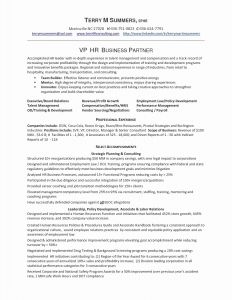 Financial Resume Template - Sample Resume for Financial Analyst Valid Financial Analyst Resume