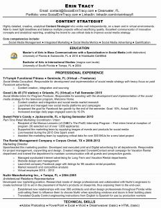 Fine Arts Career Resume - Fine Arts Career Resume Unique Resume Examples for Jobs with Little