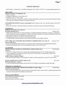 Fine Arts Resume Template - Holder Letter Template Samples