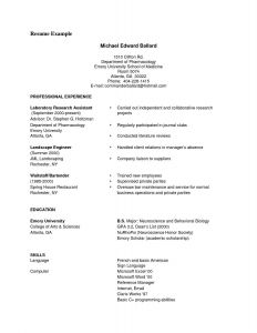 Fine Arts Resume Template - Classic Resume Templates ¢Ë†Å¡ Powerpoint Templates for Biology New