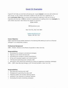 Ford Motor Company Careers Resume - Elegant Bmw Jobs Resume New Resume format Professional Resume