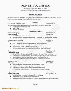 Forestry Resume - How to Write A Professional Summary Resume Simple Fresh Examples