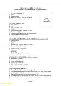 French Resume Template - 49 Awesome Best Resume Examples