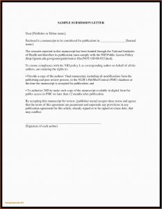 German Resume Template - Invitation Letter format for Germany Invitation Letter Canada