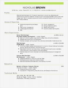 Github Resume Template - Resume Latex Templates Save Letter Stencils for Painting Lovely Cfo