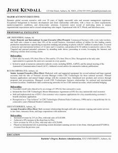 Good Sales Resume - New Resume Sample Sales Executive