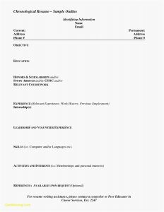 Hairdresser Resume Template - Download Awesome I Need A Resume