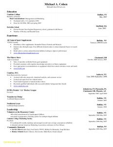 Hockey Resume Template - Fitness Resume Template Awesome Professional Resume Templates for