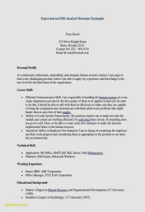 Hospitality Resume - How to Make Resume Template Hospitality Free Resume Templates