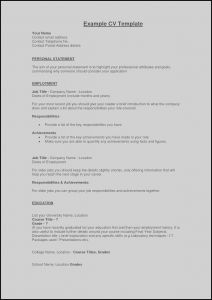 How to Write Achievements In Resume - What Should A Resume Include for A Job Valid Example Perfect Resume