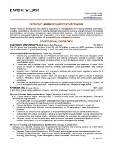 Human Resource Manager Resume Template - Journalism Resume Examples Unique Hr Director Resume Examples