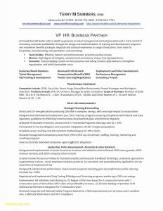 Human Resources Manager Resume Template - the 20 Beautiful Pics Human Resources Manager Resume Examples