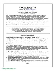 Indeed Resume Template - 45 Unbelievable Upload Resume to Indeed