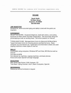 Information Technology Resume Template - Example Information Technology Resume Examples Vcuregistry