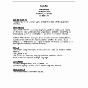Information Technology Resume Template - Information Technology Resume Examples Cute Technical Resume