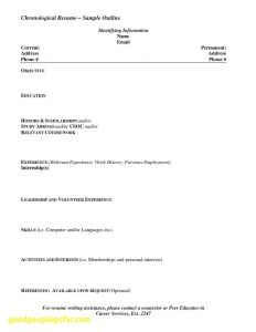 Insurance Resume - 51 Unbelievable Insurance Agent Resume