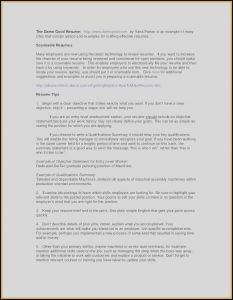 It Director Resume Template Word - 17 Senior Project Manager Resume