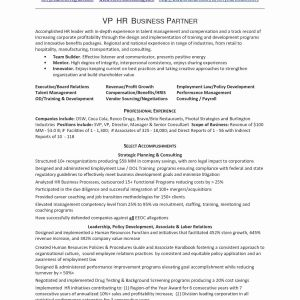 It Director Resume Template Word - It Professional Resume Template Magnificent It Professional Resume