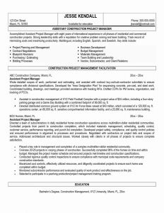 It Director Resume Template Word - Project Management Resume Samples Inspirational Manager Resume