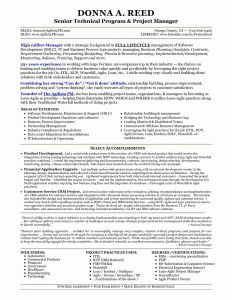 It Project Manager Resume Template - Program Manager Resume Sample