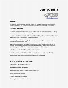 It Resume - A Good Resume Elegant Best Examples Resumes Ecologist Resume 0d It