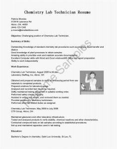 It Technician Resume - It Technician Resume Awesome 39 Super Puter Tech Resume Examples
