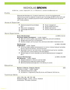 Kelley Resume Template - 18 Chef Resume Template