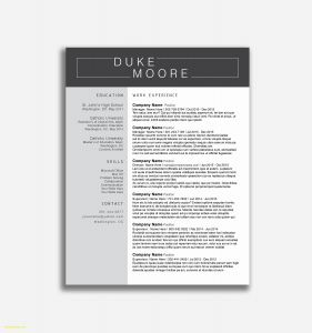 Legal Resume Template Word - Law Firm Resume Awesome Legal Resume Samples Free Download Resume