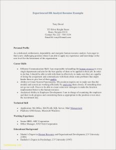 Library Resume Template - Sample Library Director Resume New Awesome Free Professional Resume