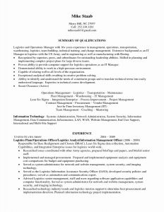 Logistics Resume Template - Security Resume Examples Typical Leadership Skills Resume Refrence