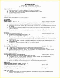 Marissa Mayer Resume Template - 27 Beautiful Stock Marissa Mayer Resume Template Word
