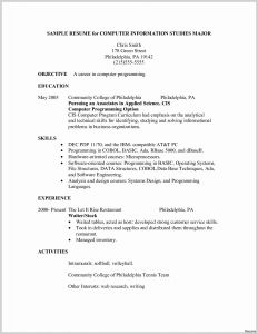 Marissa Mayer Resume Template Word - Marissa Mayer Resume Template Elegant 27 Marissa Mayer Resume